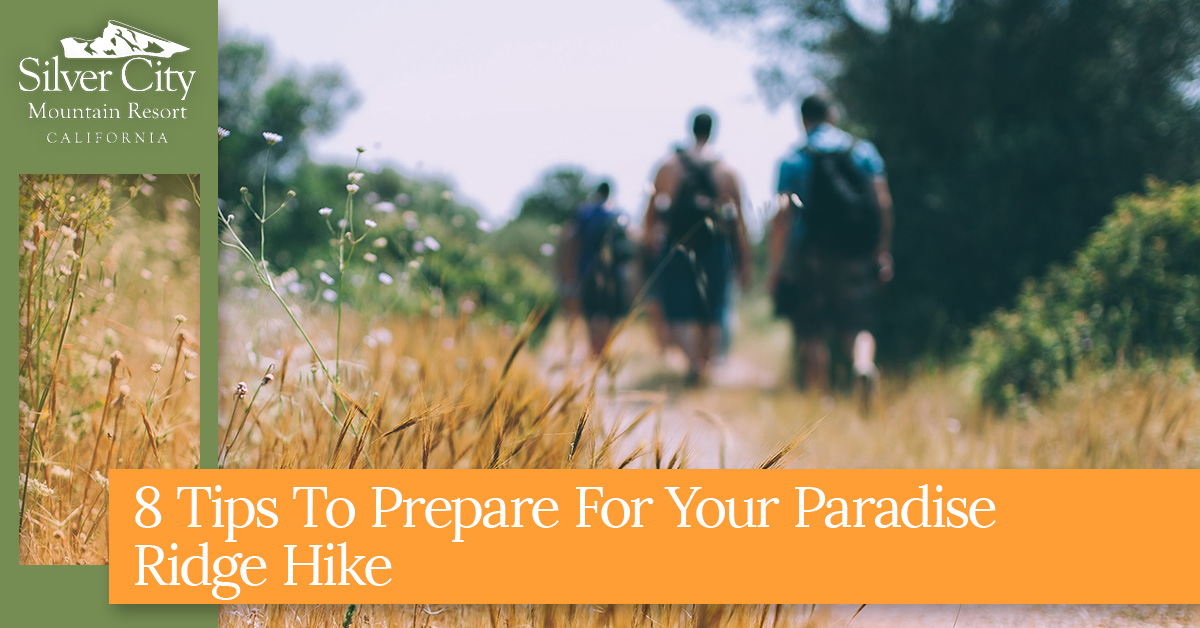 8 Tips To Prepare For Your Paradise Ridge Hike.jpg