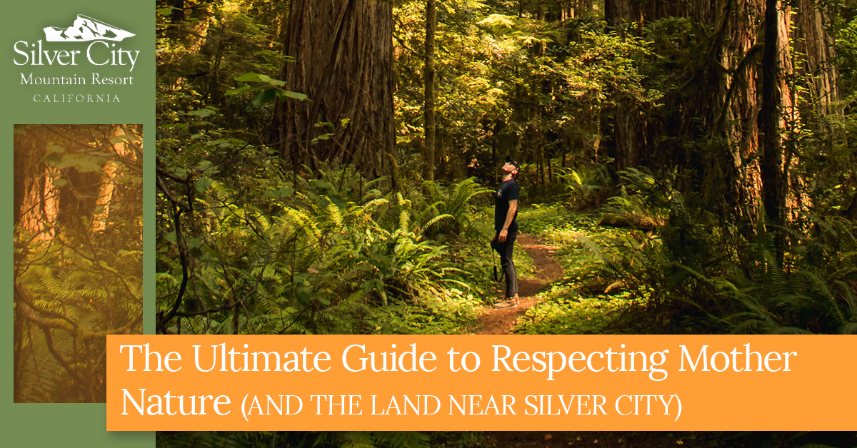 The Ultimate Guide To Respecting Mother Nature.jpg