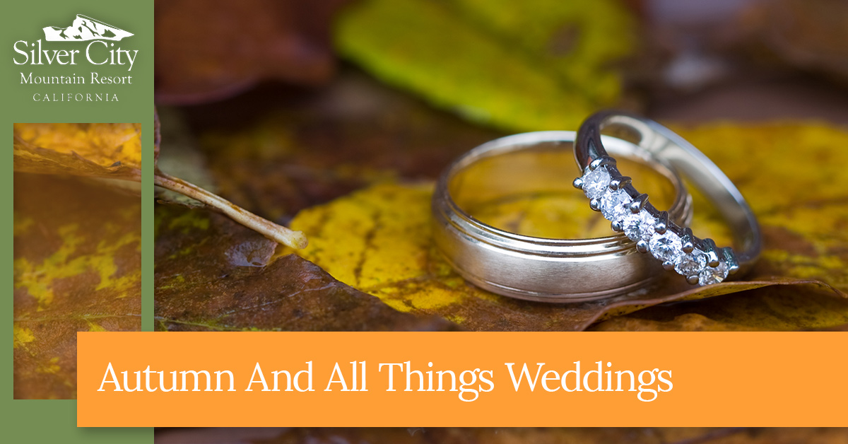Autumn And All Things Weddings.jpg