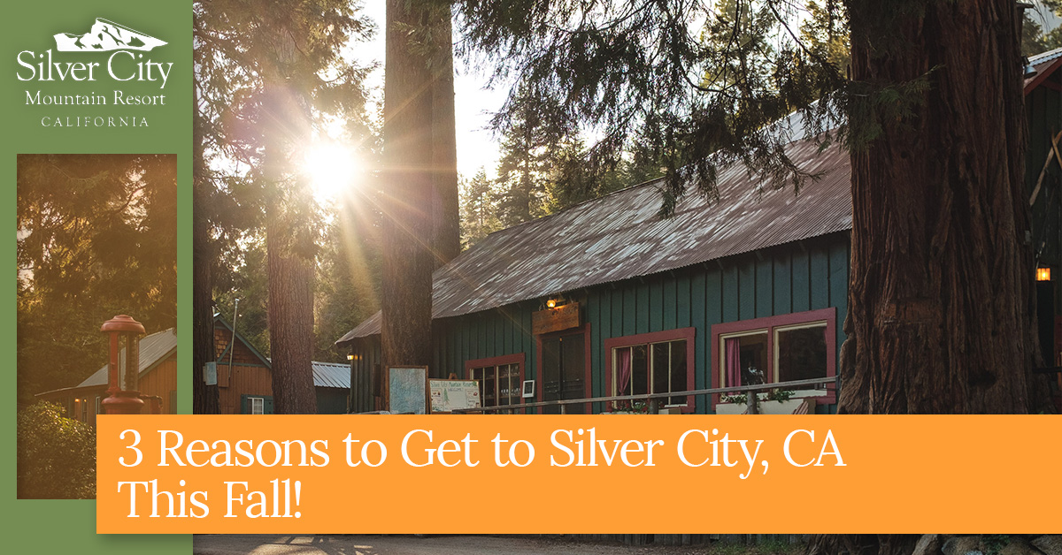 3 Reasons to Get to Silver City, CA This Fall!.jpg